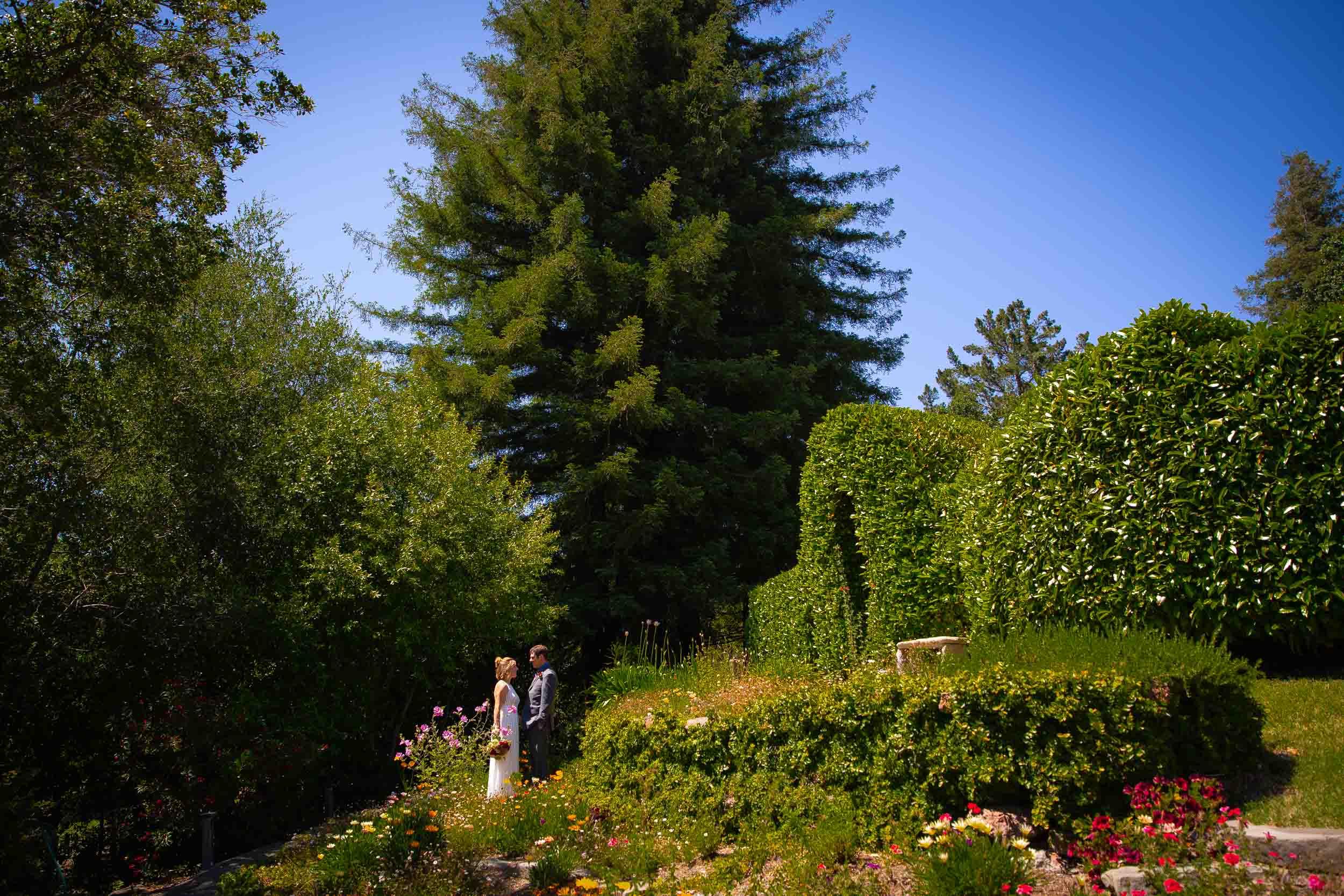 Intimate San Francisco Backyard Wedding-Alison and Joseph-7.jpg