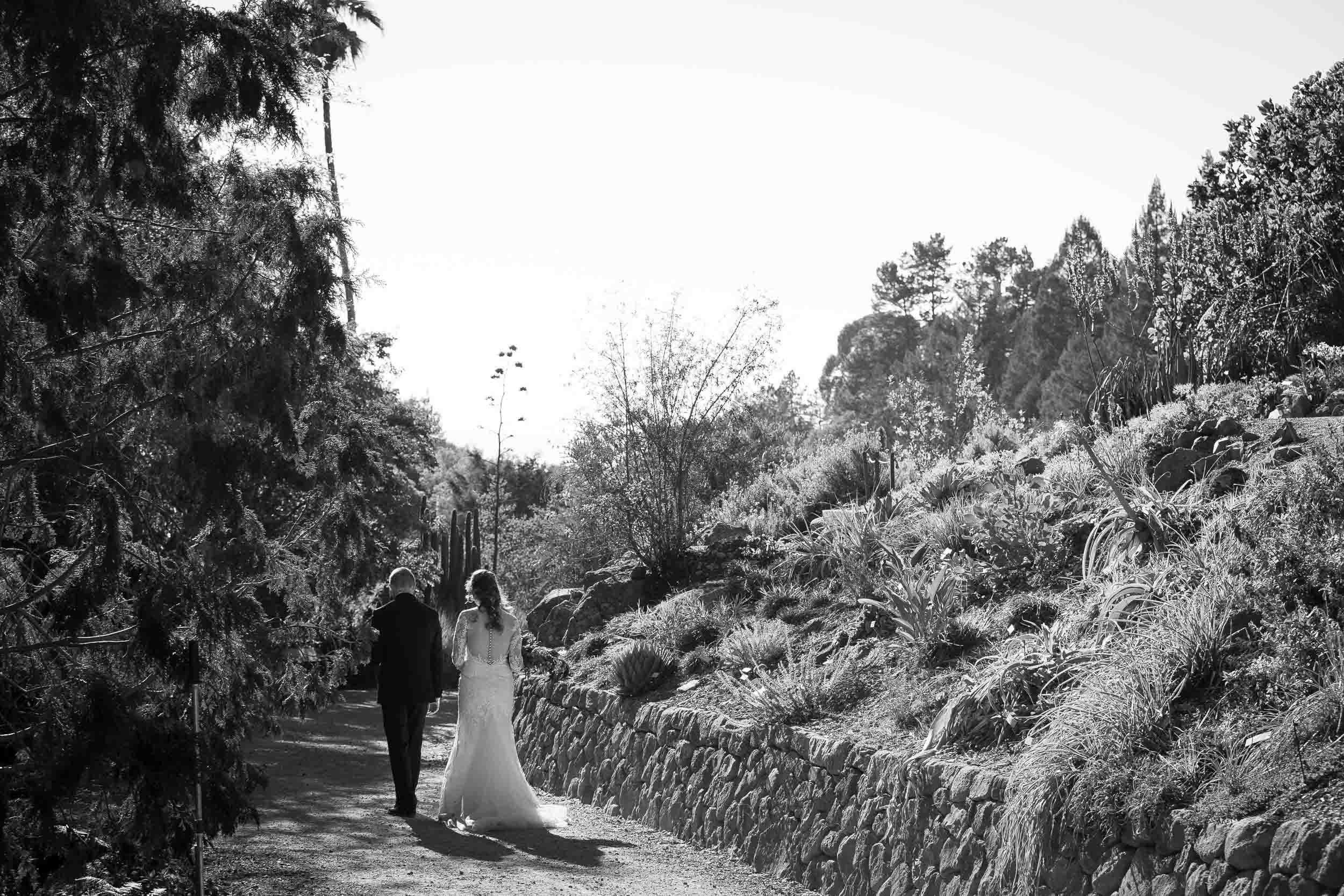 Berkeley Botanical Garden Wedding Ceremony in the Redwood Grove Ceremony and SF Bay Wedding Cruise Reception-60.jpg