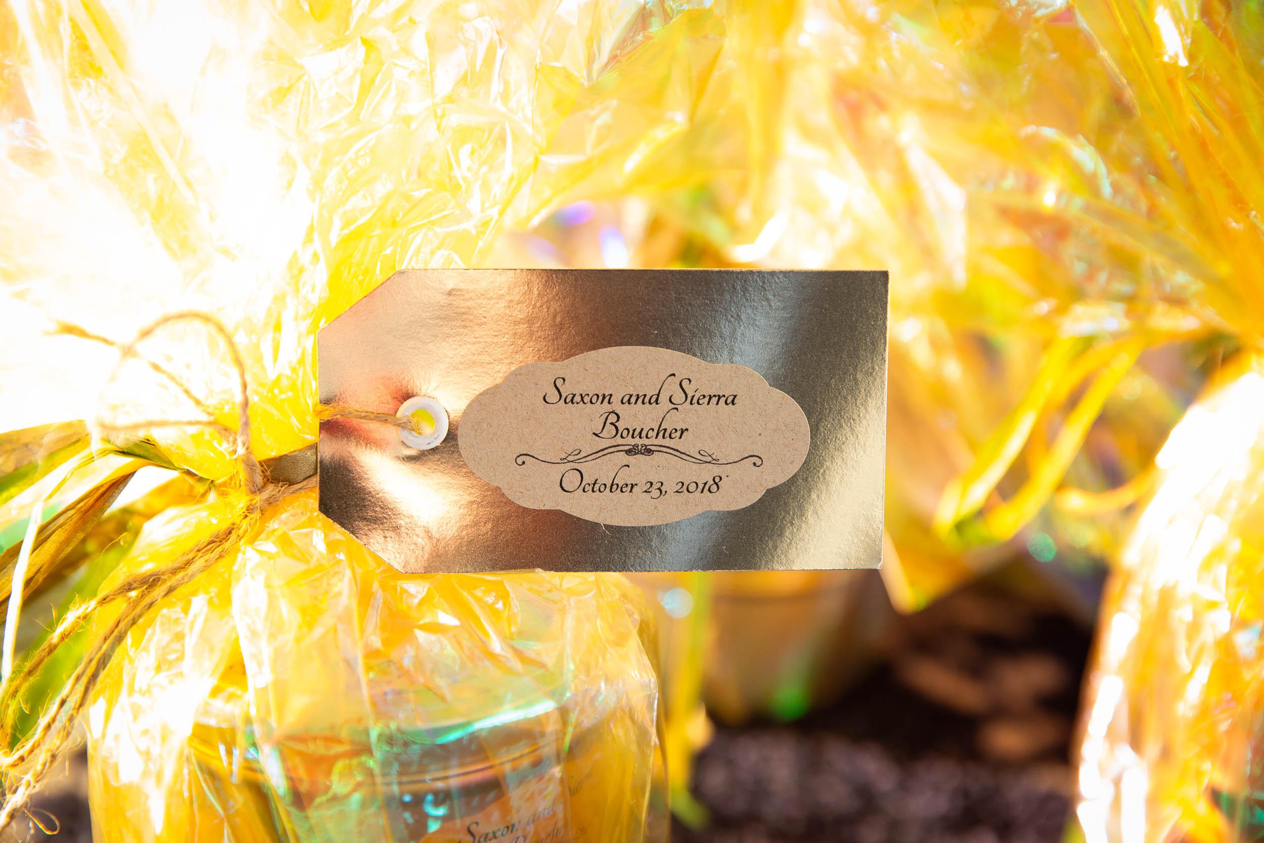 Berkeley Botanical Garden Wedding Ceremony in the Redwood Grove Ceremony and SF Bay Wedding Cruise Reception-74.jpg