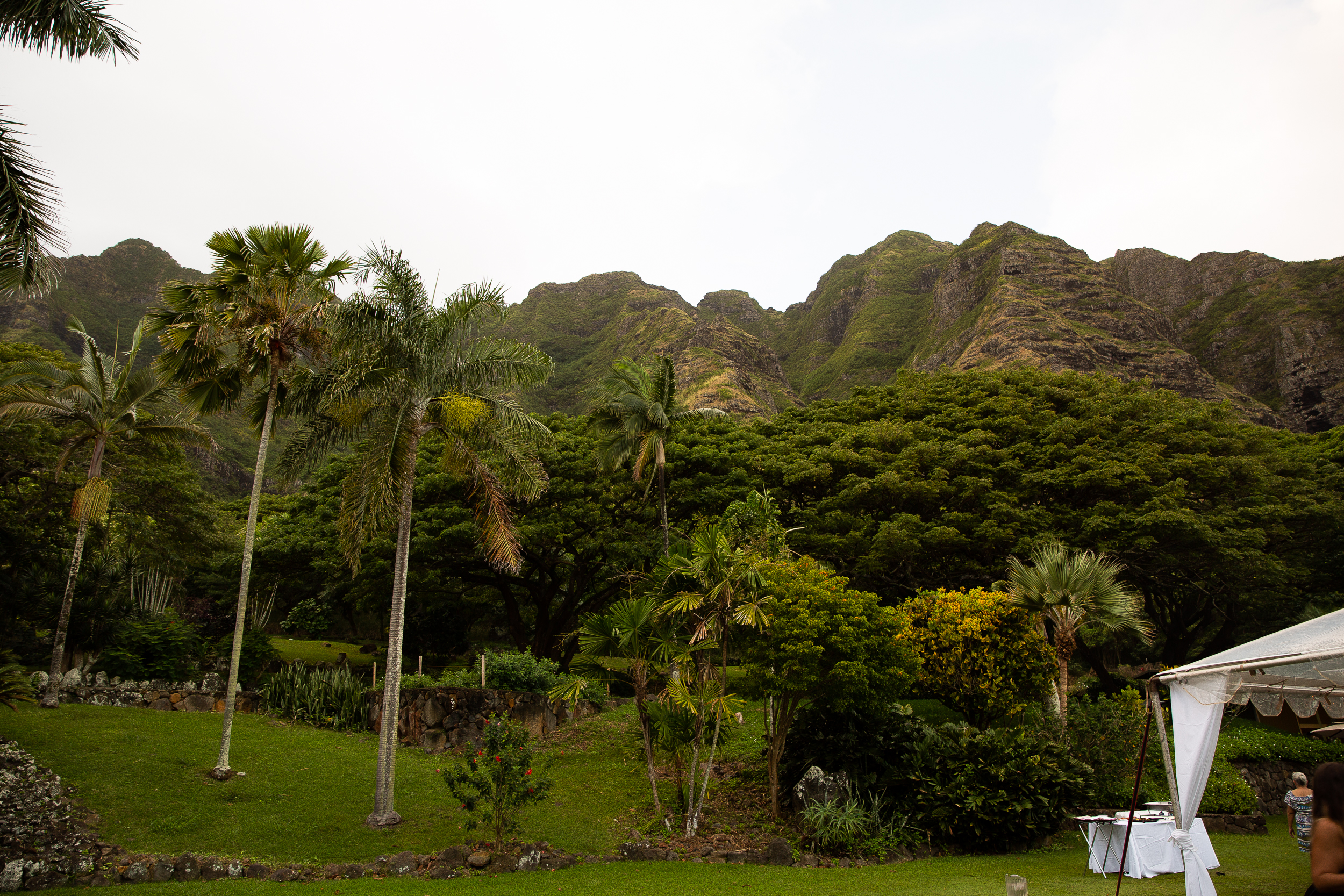Kualoa Ranch Wedding in Hawaii -61.jpg