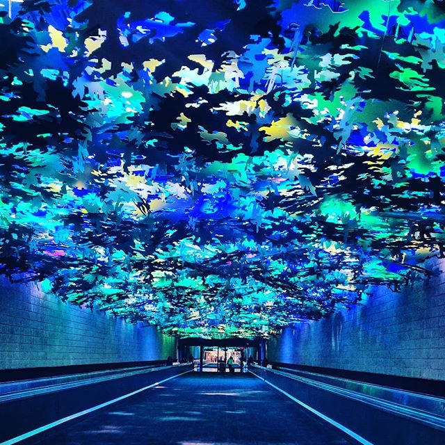 There are some airports with super cool tunnels & I think #ATL may be my fav so far. ✈