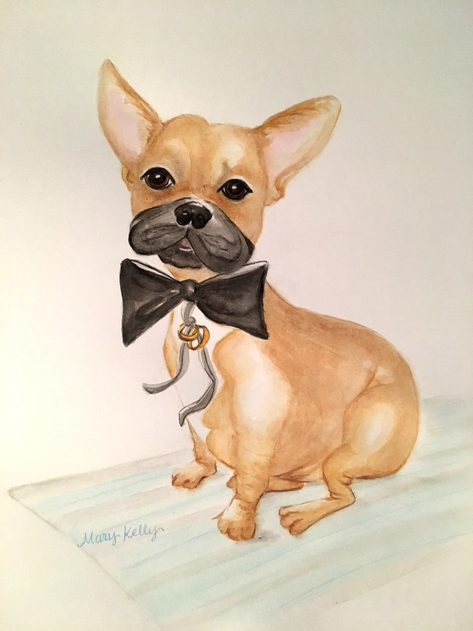 french bulldog ring bearer, © 2019 marykellydesigns