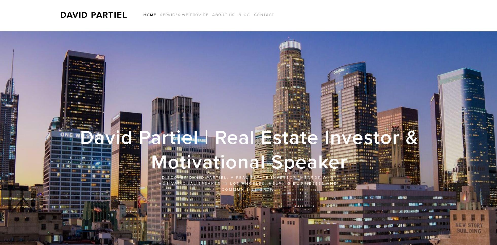 David Partiel Website