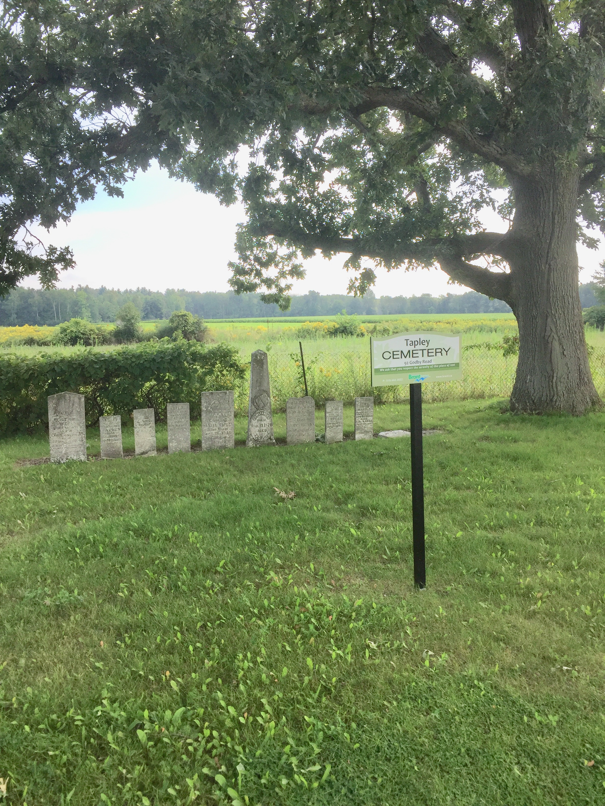 - At Robert's urging the County has adopted a higher care and maintenance standard for the Counties active and inactive cemeteries.