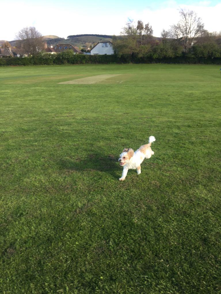 Luna showing us her speed