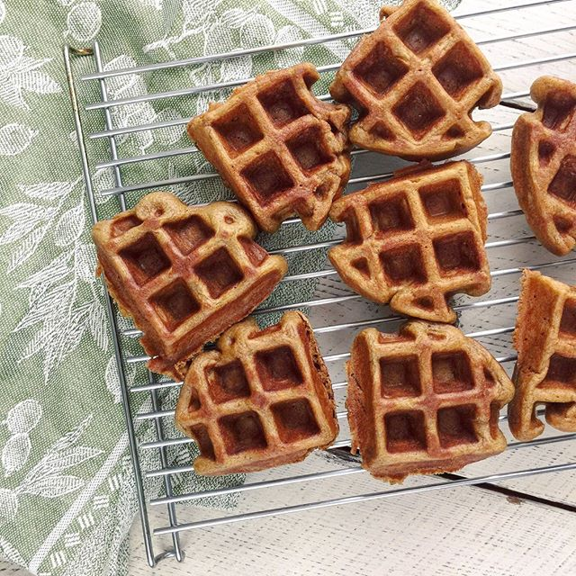 Gingerbread Paleo Waffles are the best way to bring a little of your weekend into your day. Tuesday, not looking too shabby! 🤗 These waffles are grain free and made with plantains, a recipe from @purelytwins. They are so fluffy... with the help of a Belgian waffle maker. I make sure to toast them a little so they are extra crisp 👌🏻 You can get a whole lot of plantain recipes over on their blog @purelytwins ☺️ INGREDIENTS: plantains, egg, coconut oil and flour, baking powder, cinnamon and spices, molasses, psyllium husk and stevia.  #dailybeets #offthebeetenplate . . . #glutenfree #cleaneating #dairyfree #paleo #nomnom #feedfeed #healthyfood #fitness #foodie #instafood #foodgawker #homemade #vegetarian #instahealth #photooftheday #whole30 #easyrecipes #buzzfeast #waffles #feedfeed #eeeeeats #foodgasm #brunch #eatingfortheinsta #foodie #thekitchn #hungry #tasty