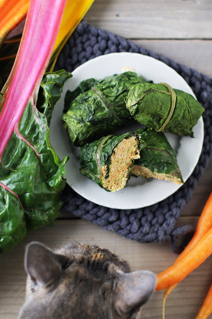 Turkey roll-ups wrapped in chard leaves! A filling made with carrots, zucchini and Asian flavors, and served with an avocado dipping sauce!