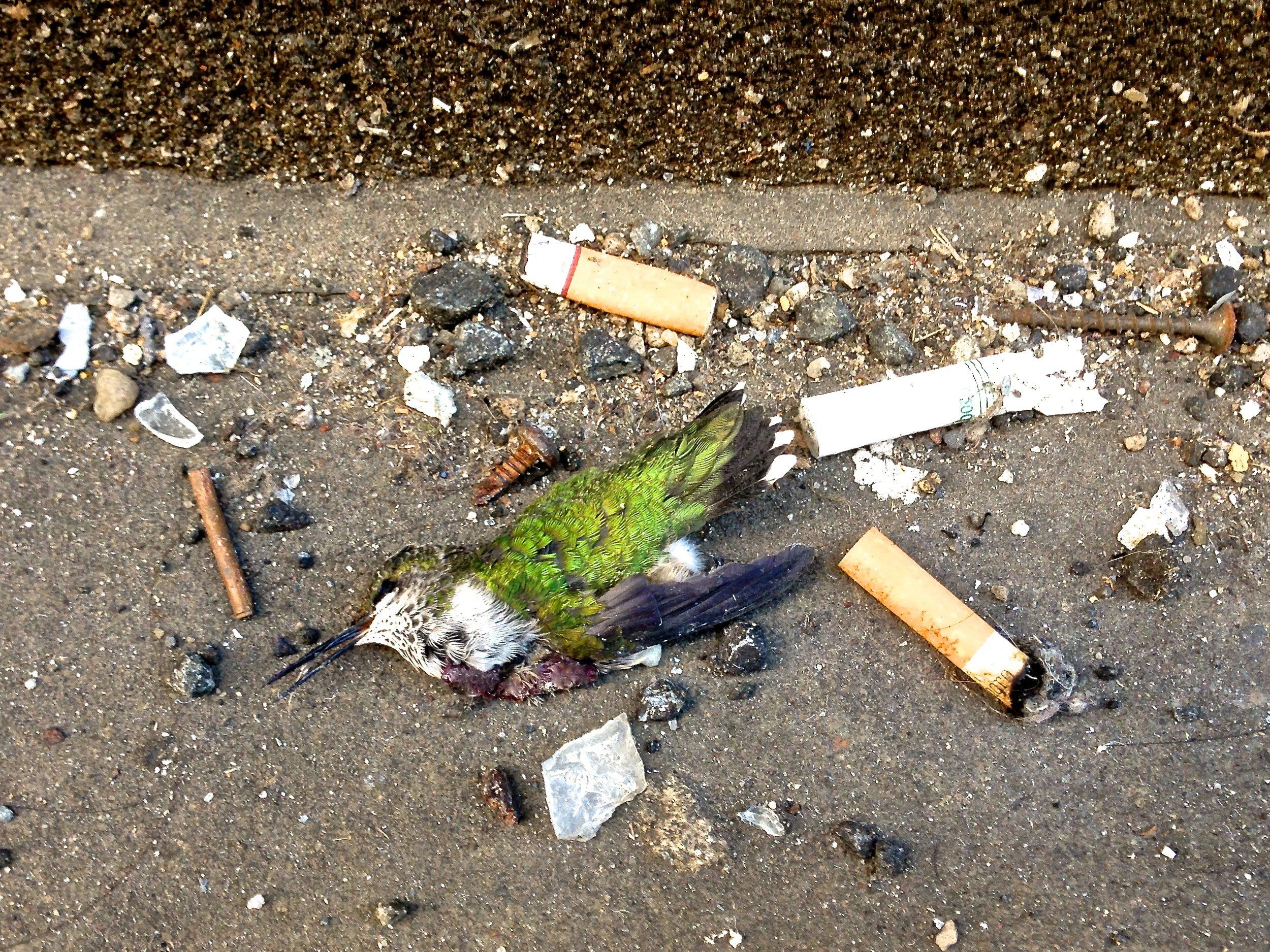 A Broken Heart, NYC, NY