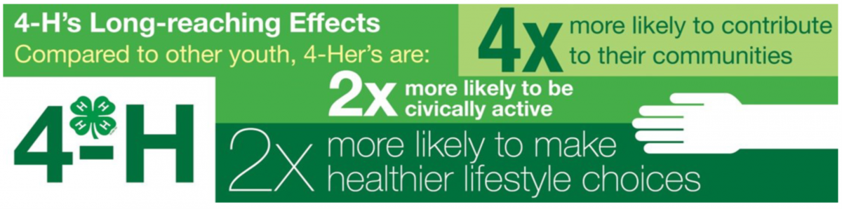 Image result for 4-H life long reaching effects""
