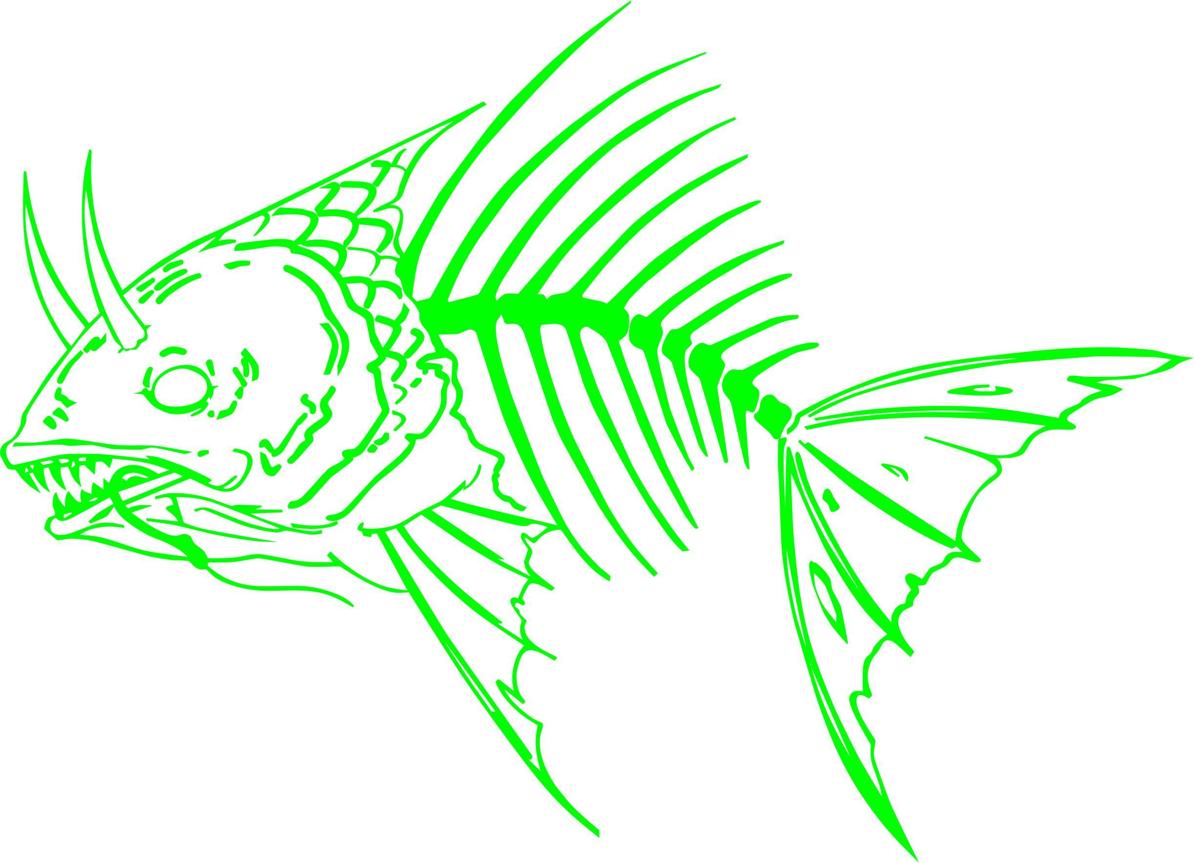 bad fish 4.jpg