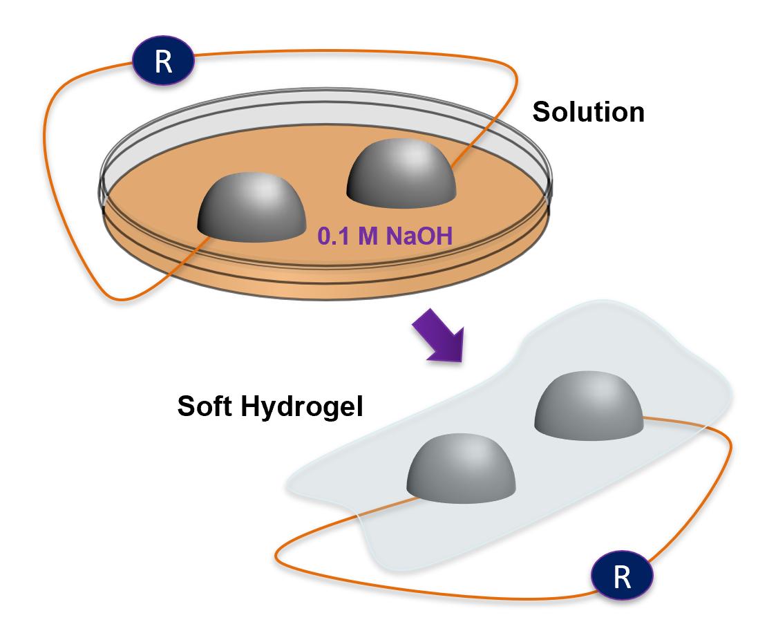 hydrogel.PNG