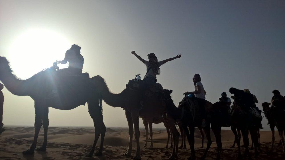 sahara+desert+tour+morocco+camels.jpg