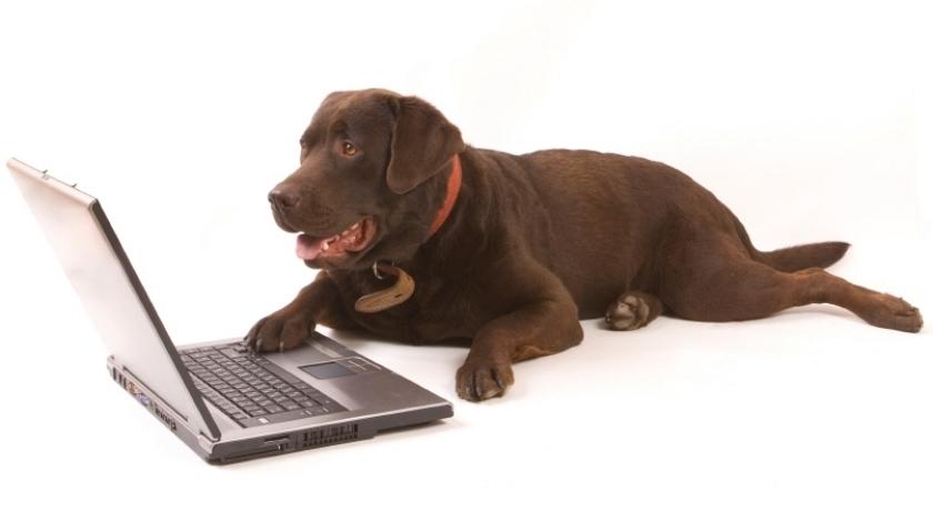 Online GMAT Prep Course