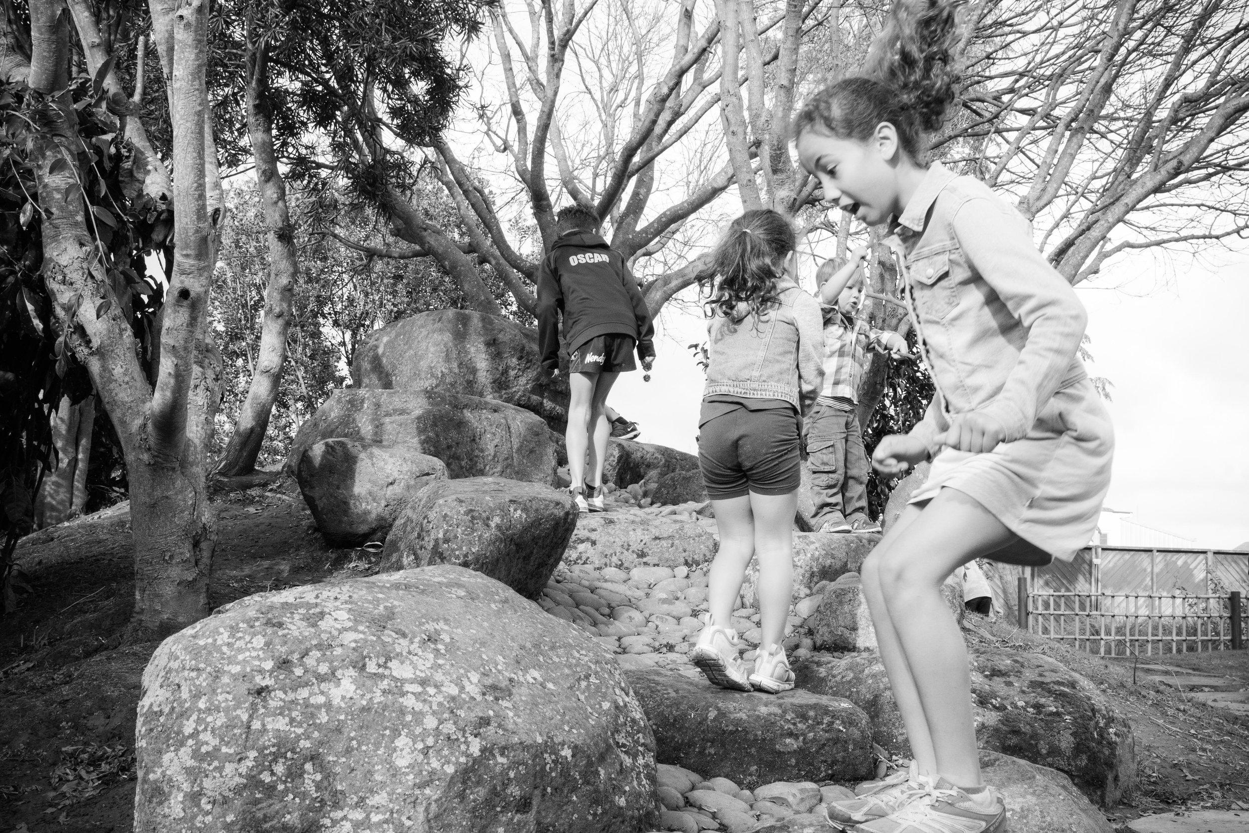 TePunaTaiao-JapaneseGardens-HighRes-9747.jpg