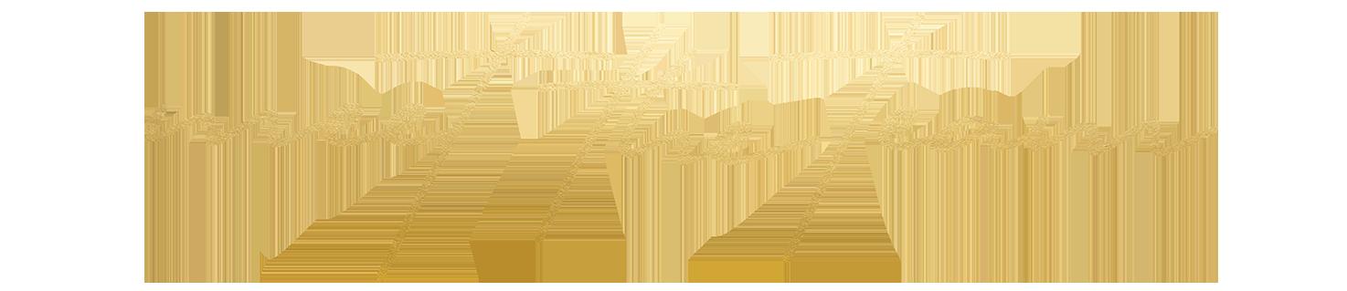 meettheteam-gold-new.png
