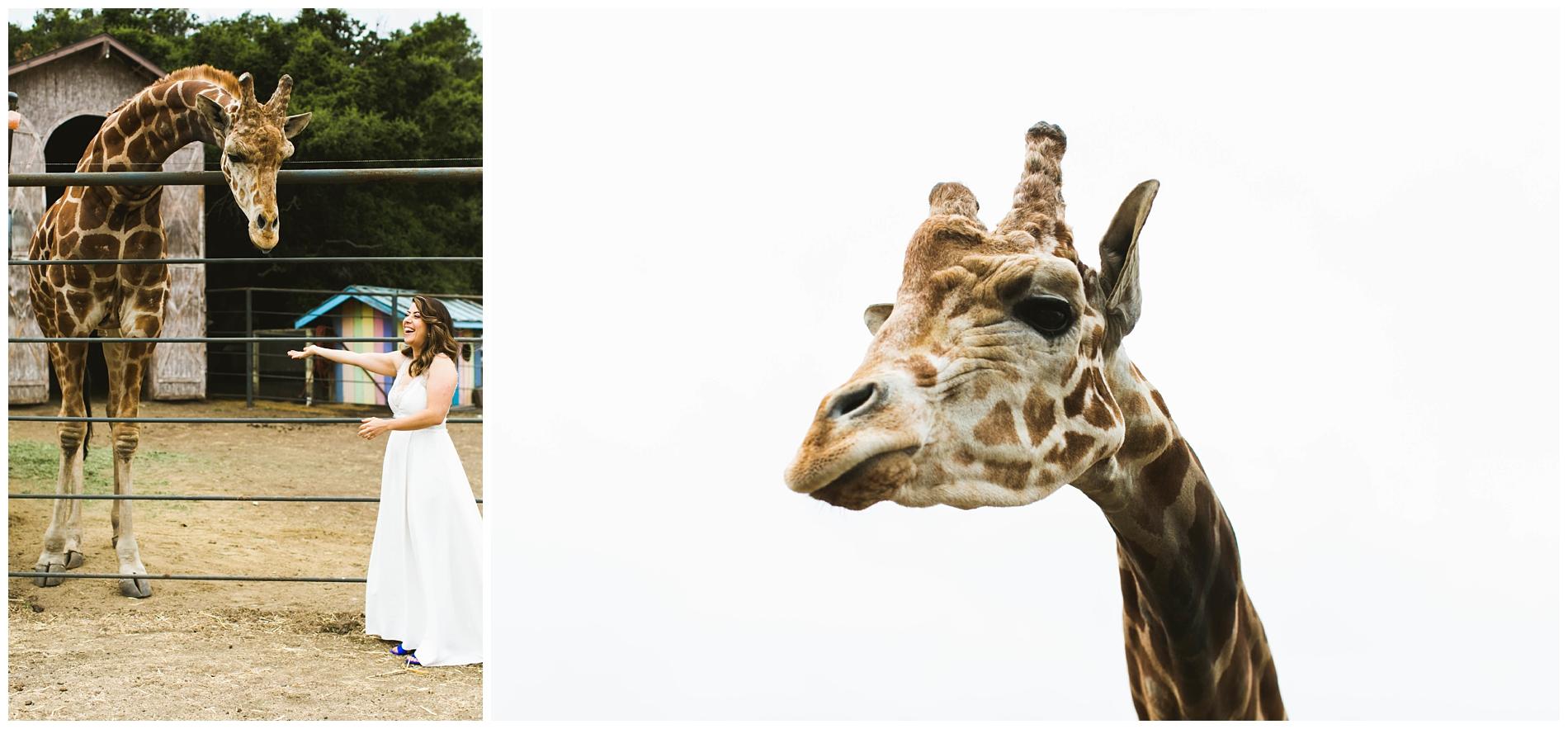 Saddlerock Ranch WeddingPhotography_0009.jpg