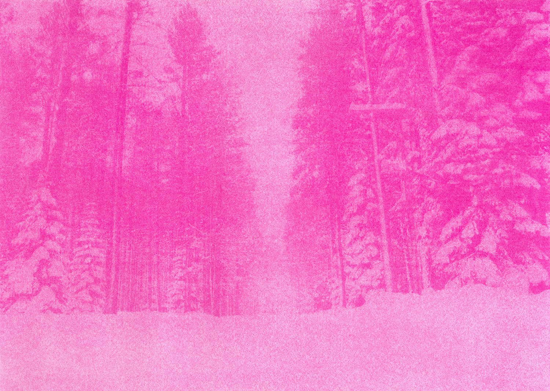 Pinkscape#4_Selvaggio_Dordetti.jpg