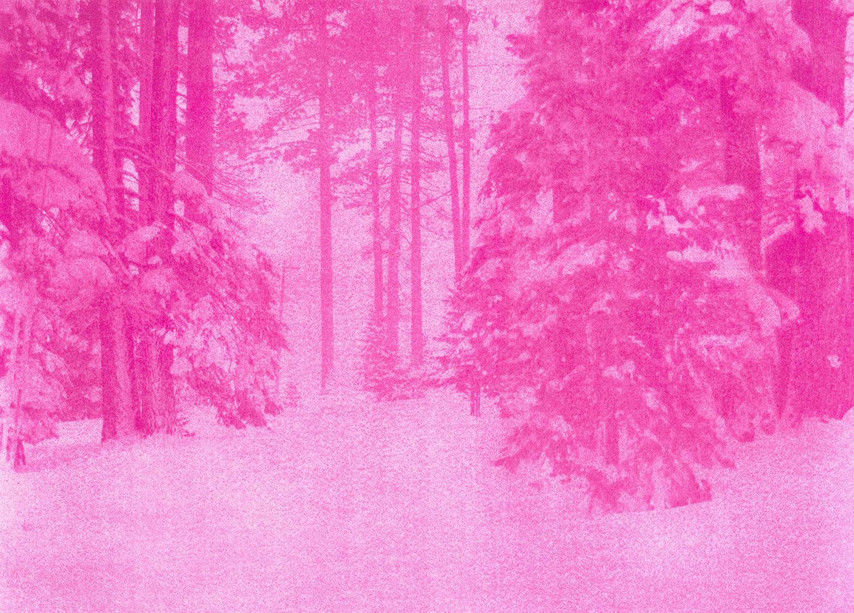 Pinkscape#1_Selvaggio_Dordetti.jpg