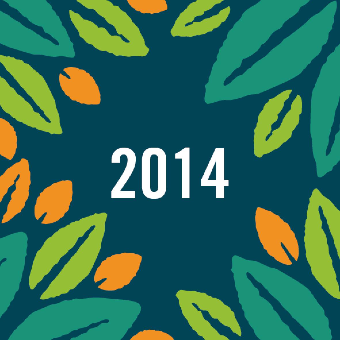 Informe y Cuentas de Amantani  2014