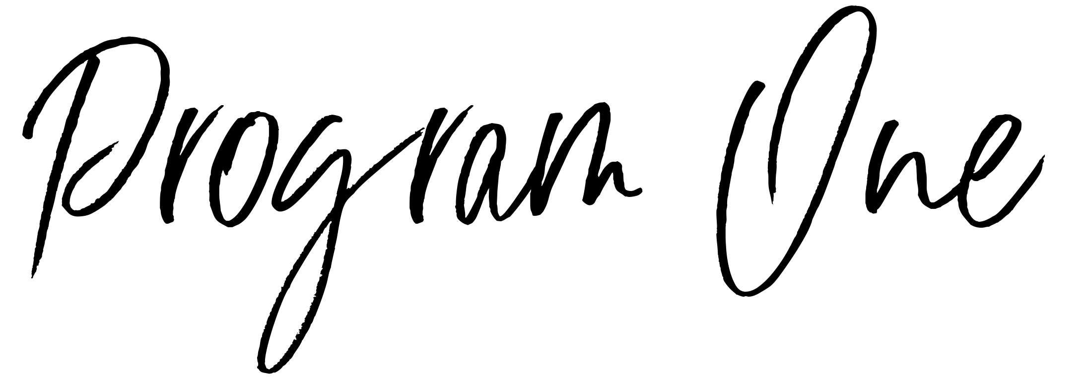 Program-1.png