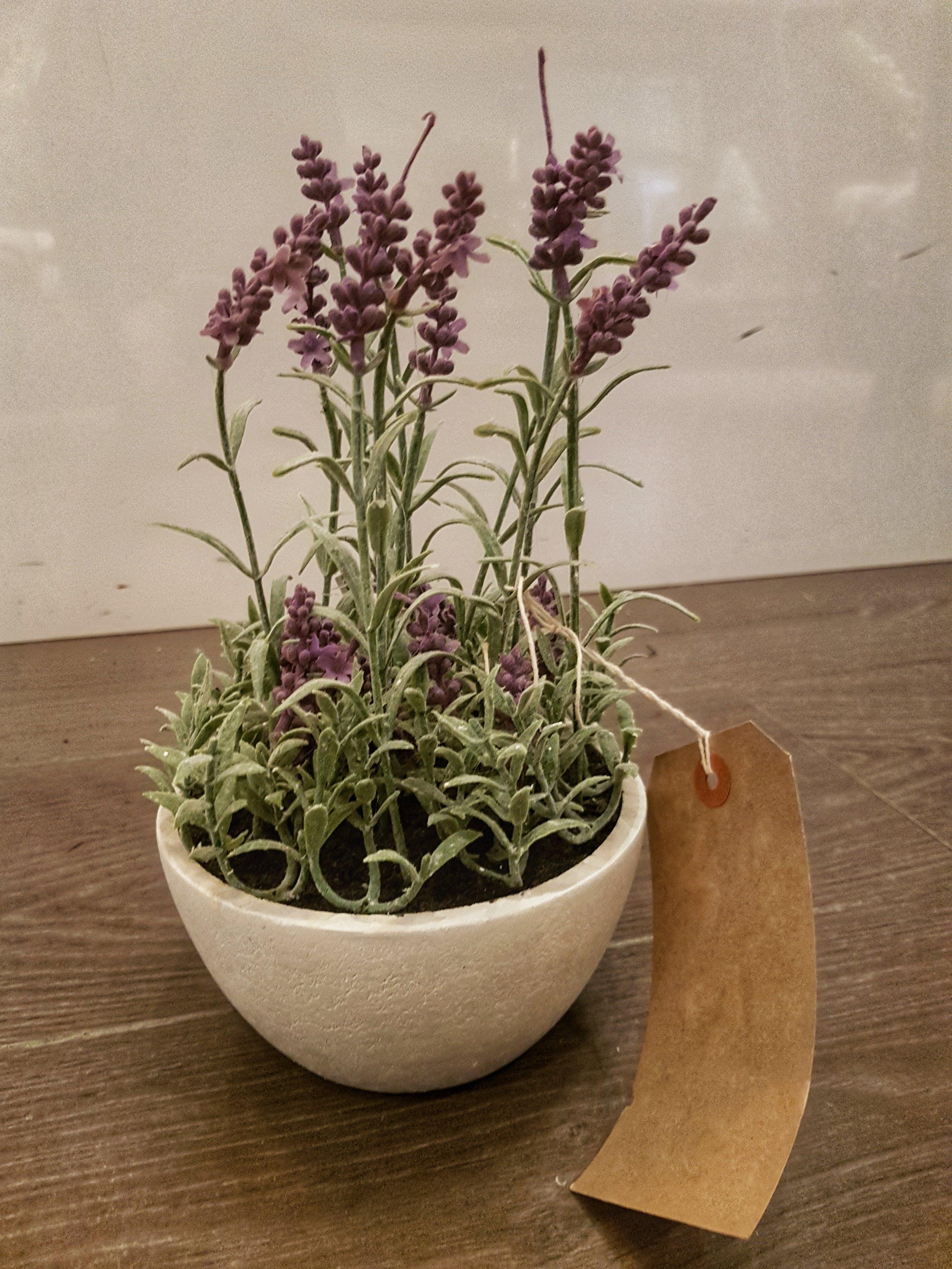 Faux Lavender - £16