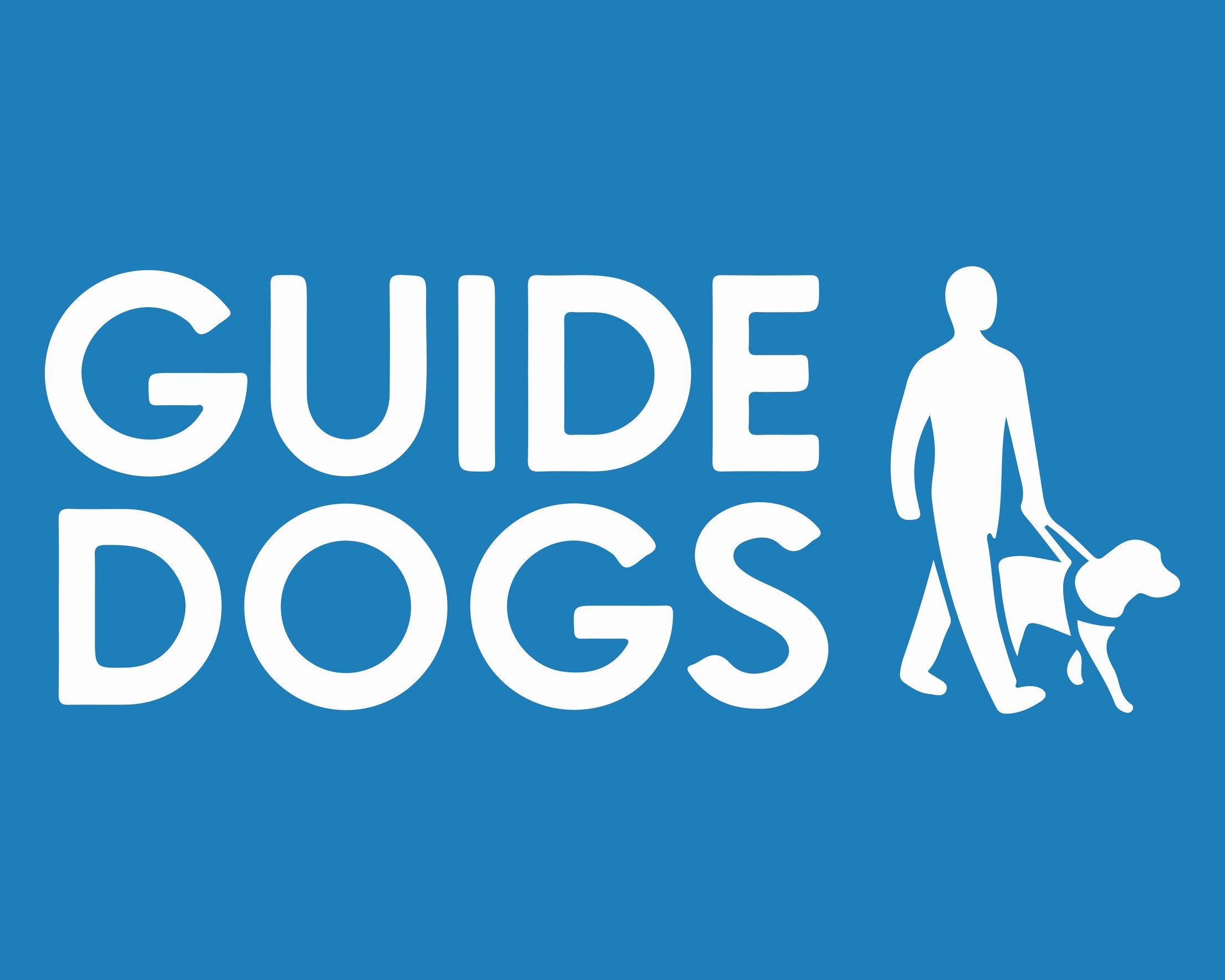 Meet Lester the new guide dog puppy -