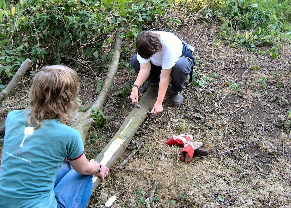 3-environmental-art-craigmillar-castle-park-wood-stripping.jpg