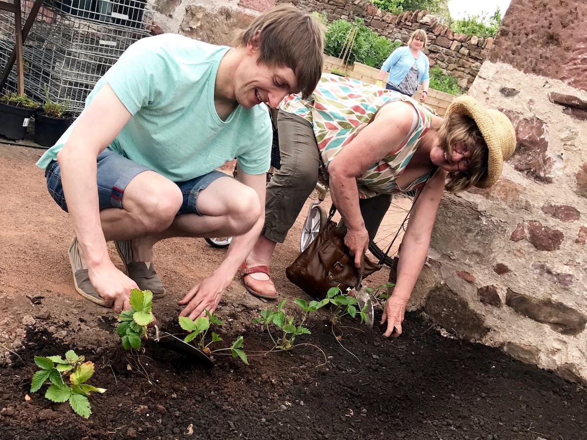 6-backlands-community-garden-workshop-north-light-arts.jpg
