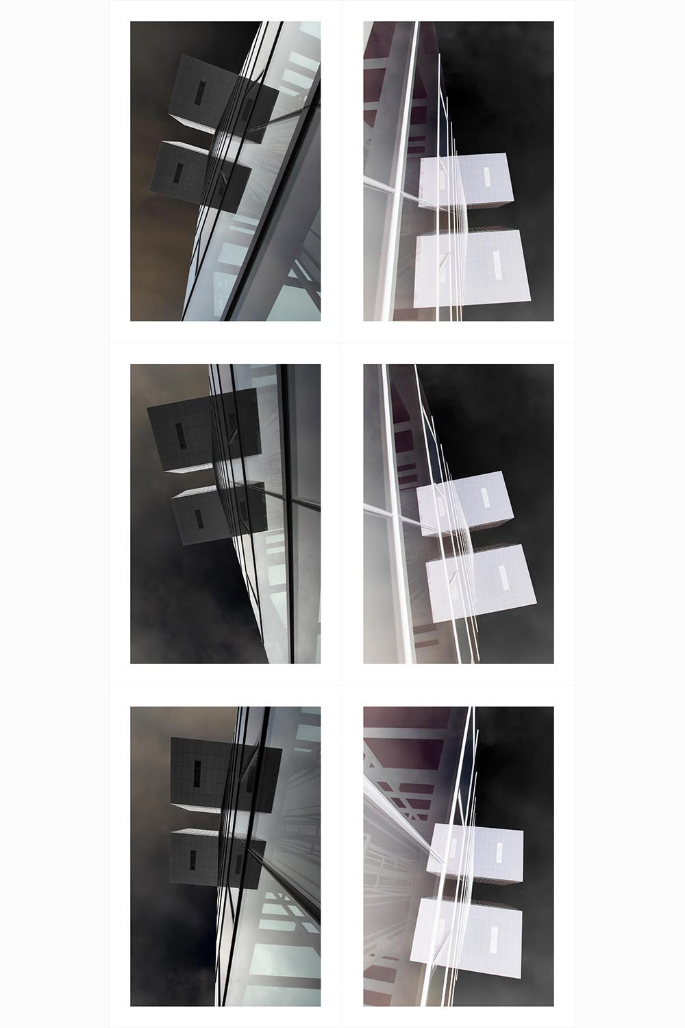 Spinal Structure in Transformation  2015  Archival inkjet on cotton rag paper  145cm high x 66cm wide  6 panels, each 48.3cm high x 33cm wide