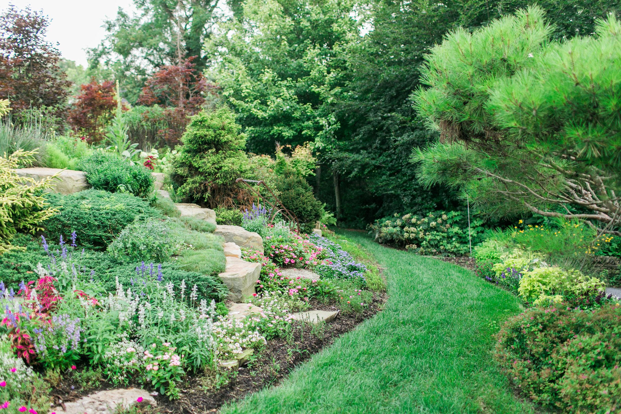 garden3334.jpg