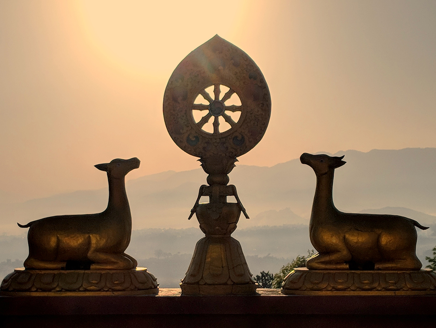 Dharma Wheel and Pair of Deer on top of the roof of Neydo monestary in Kathmandu Nepal. Image taken on the last day of my Yoga Teacher Training with Heather Elton 2018.