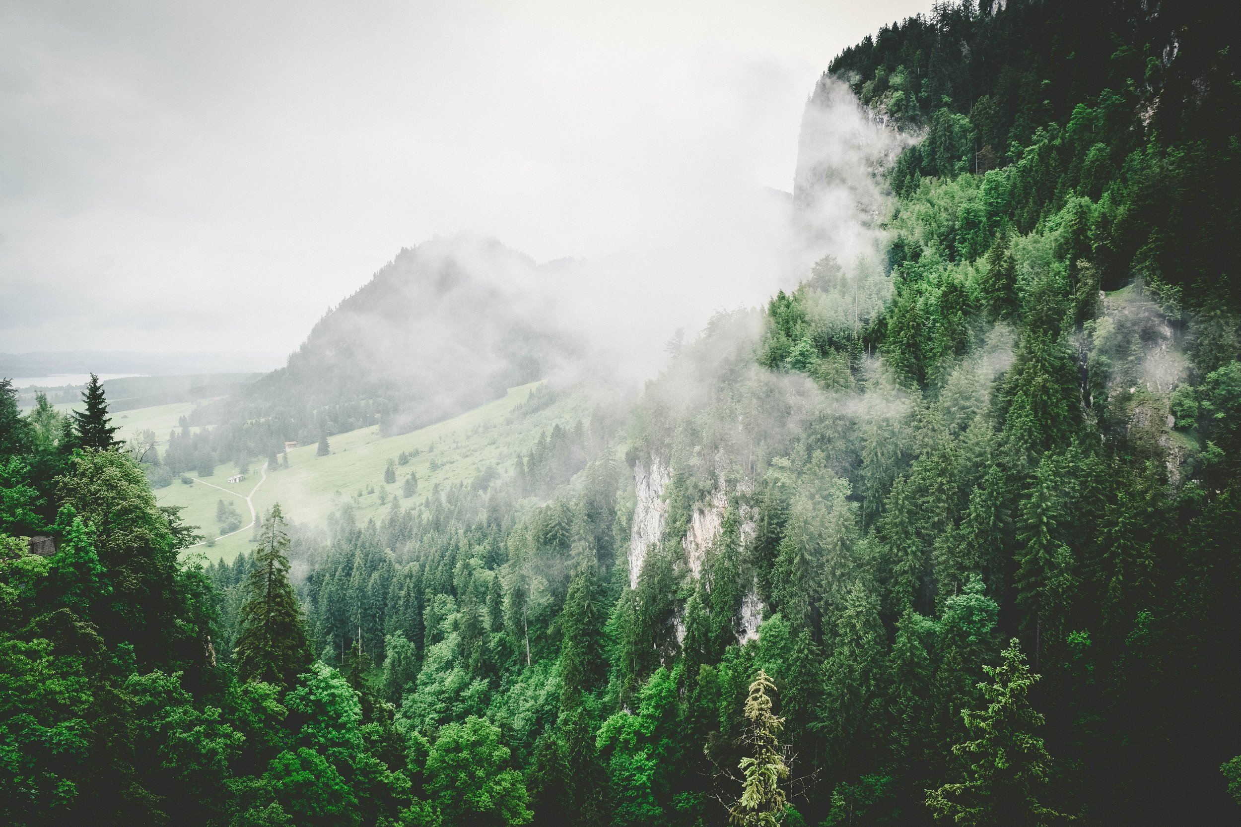 bossfight-free-stock-photos-trees-clouds-white-hills.jpg