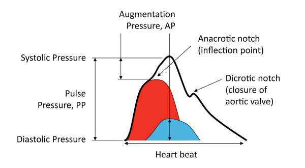 bpplus-augmentation-index-1.png