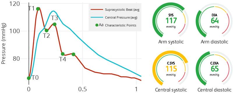 central-blood-pressure.jpg