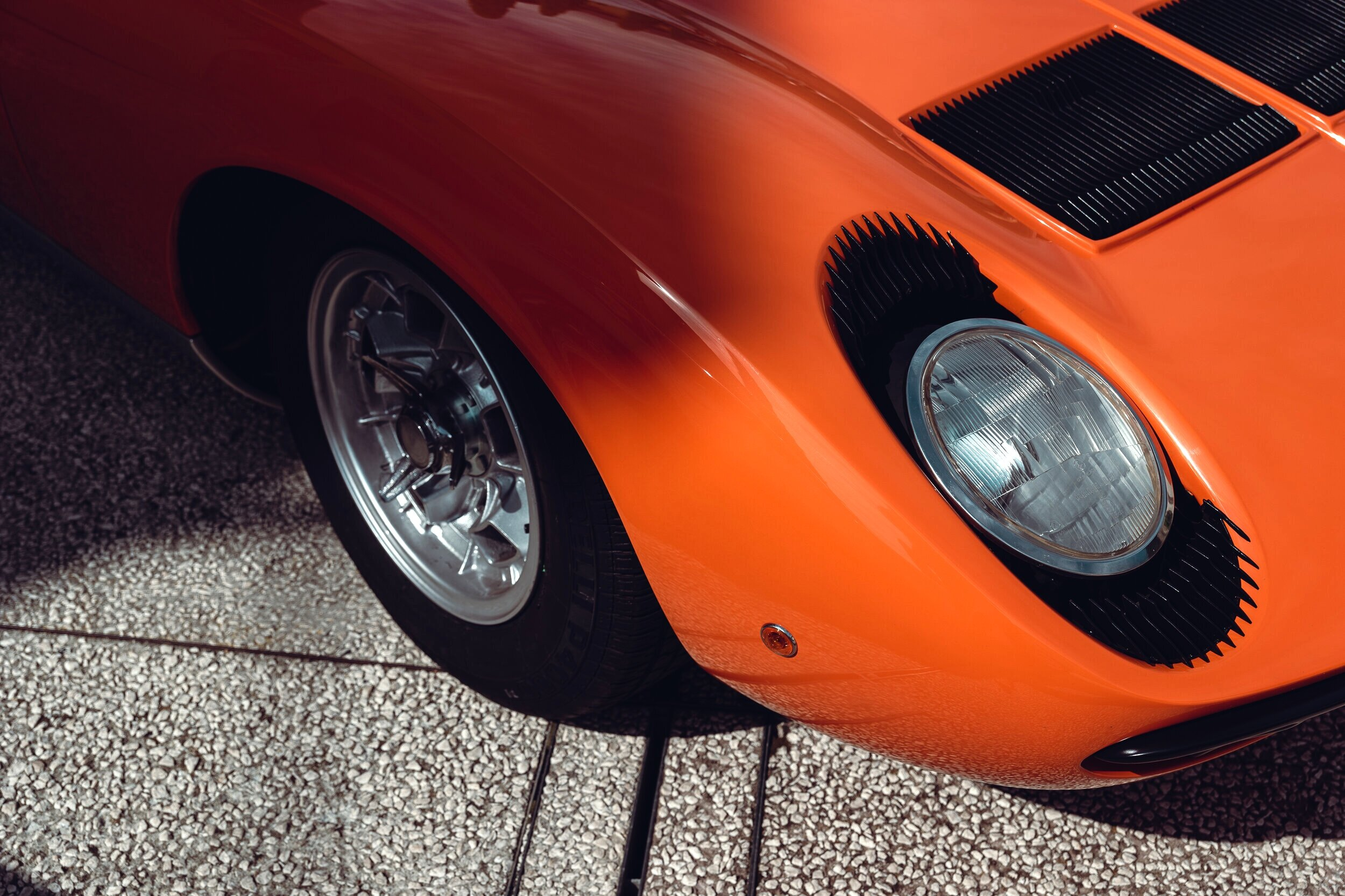 Miura orange popping out of shade.