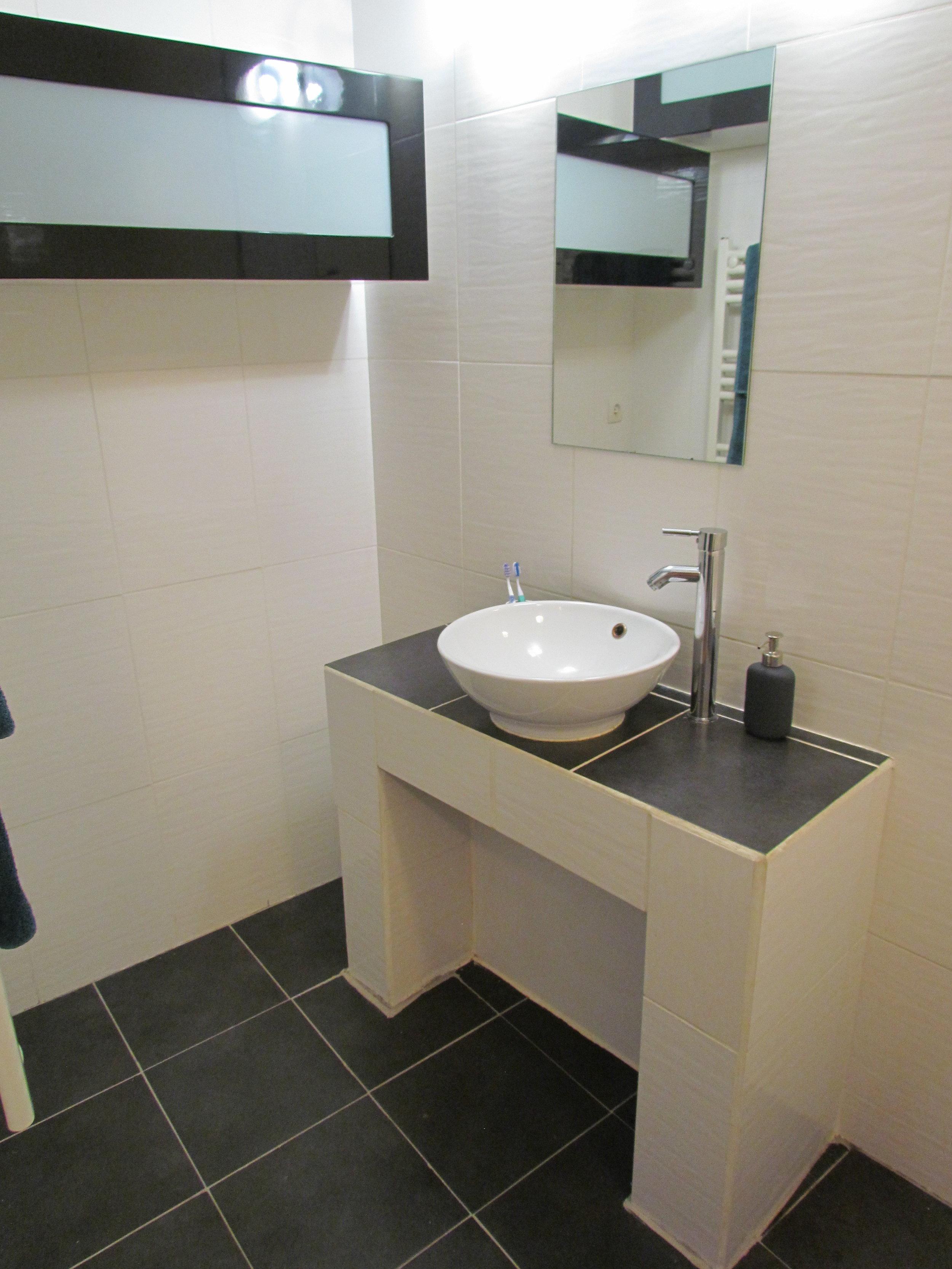 Bathroom - sink and one cupboard.JPG
