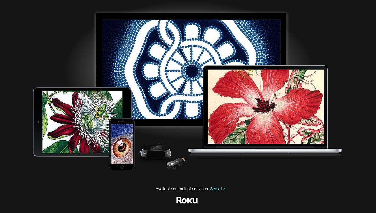 RokuScreengrab.jpg
