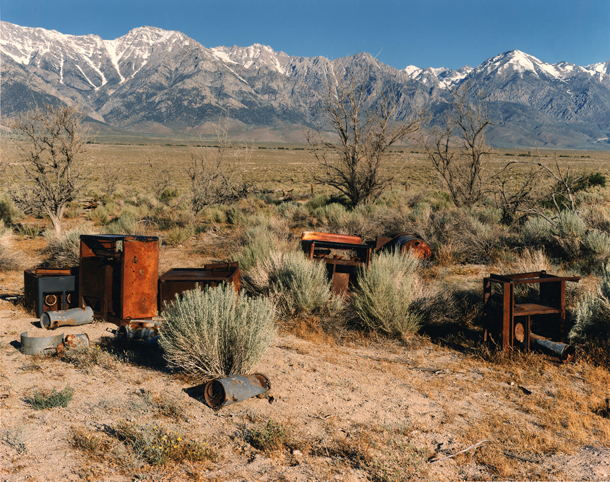 Apple orchard, Manzanar Japanese-American Relocation Camp, Owens Valley, California, 1995