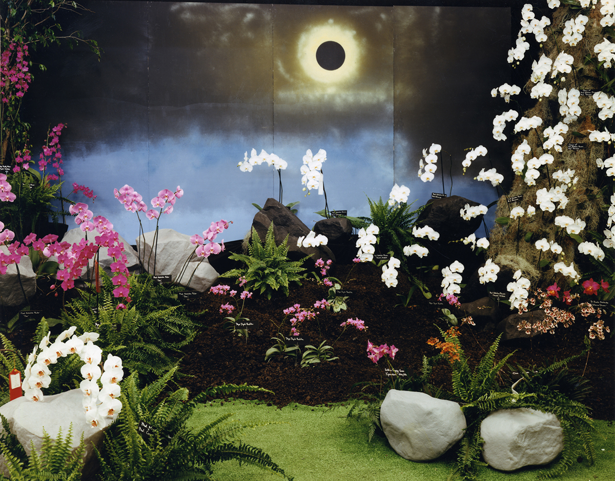 """Depiction of total eclipse for """"Galaxy of Orchids,"""" the annual 4th of July show of the Hilo Orchid Society, Hilo, Hawai'i, 1991"""