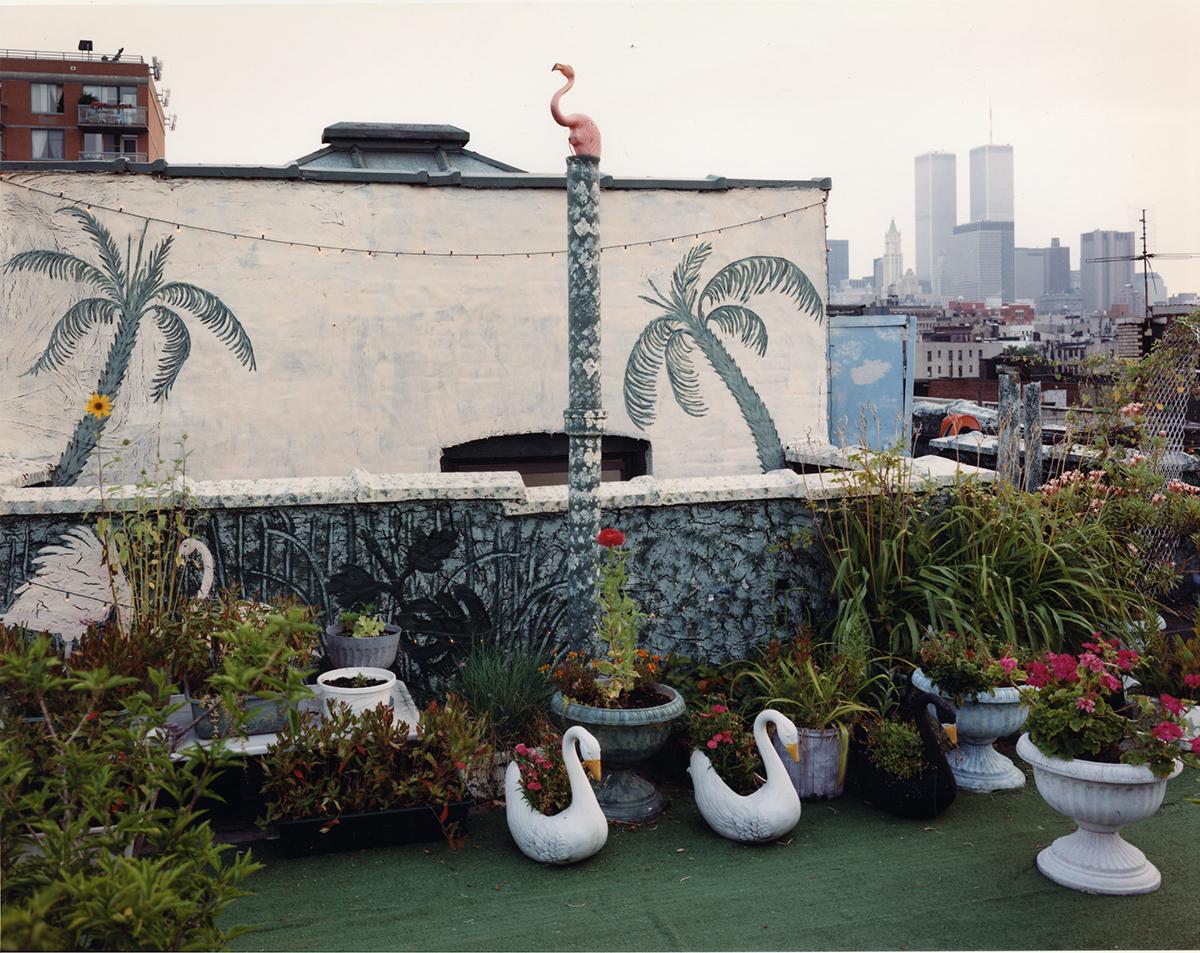 Rooftop garden, East Village, New York, 1997