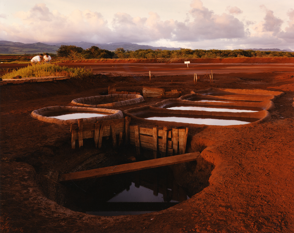 Seawater evaporating to make salt, an ancient Hawaiian tradition, Hanapepe, Kaua'i, 1991
