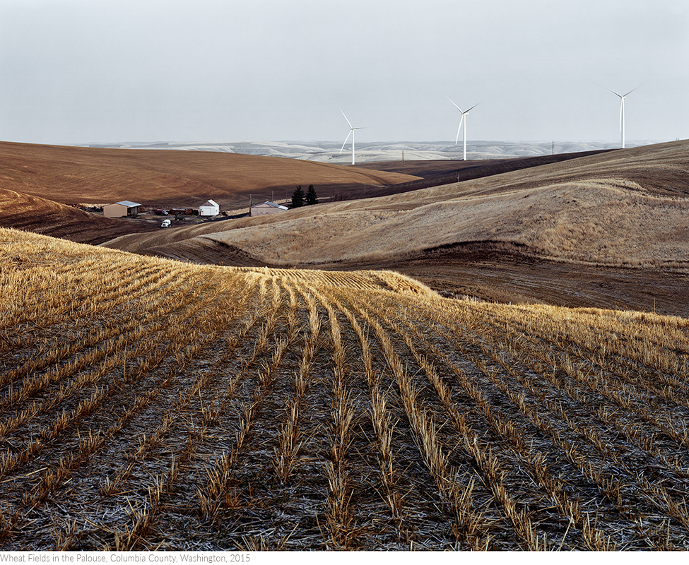 Wheat+Fields+in+the+Palouse,+Columbia+County,+Washington,+2015titledsamesize.jpg