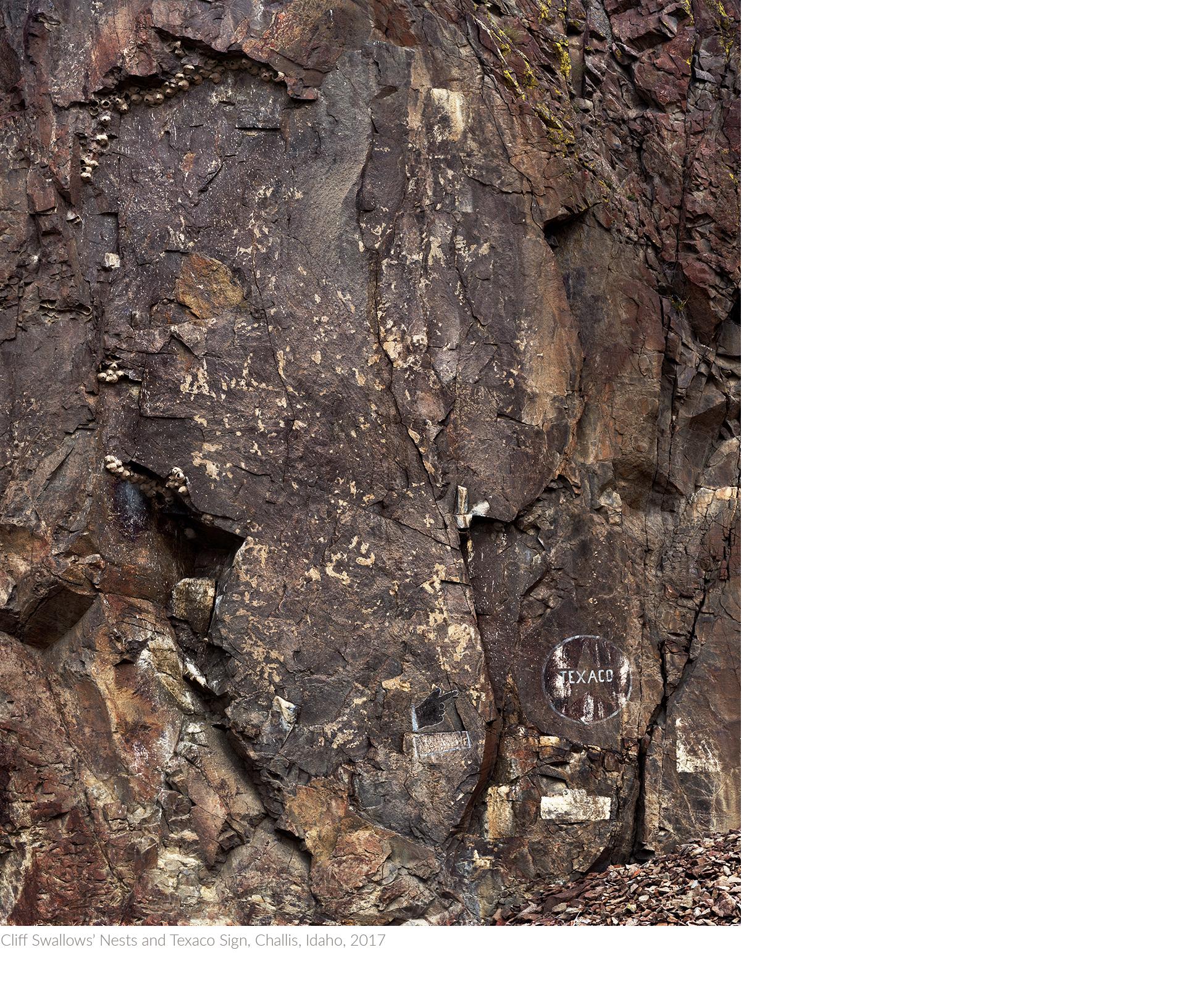 Cliff+Swallows'+Nests+and+Texaco+Sign,+Challis,+Idaho,+2017+copytitledsamesize.jpg