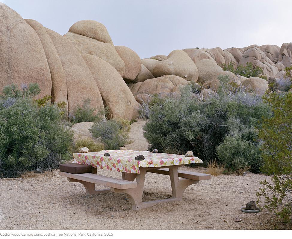 Cottonwood+Campground,+Joshua+Tree+National+Park,+California,+2015titledsamesize.jpg