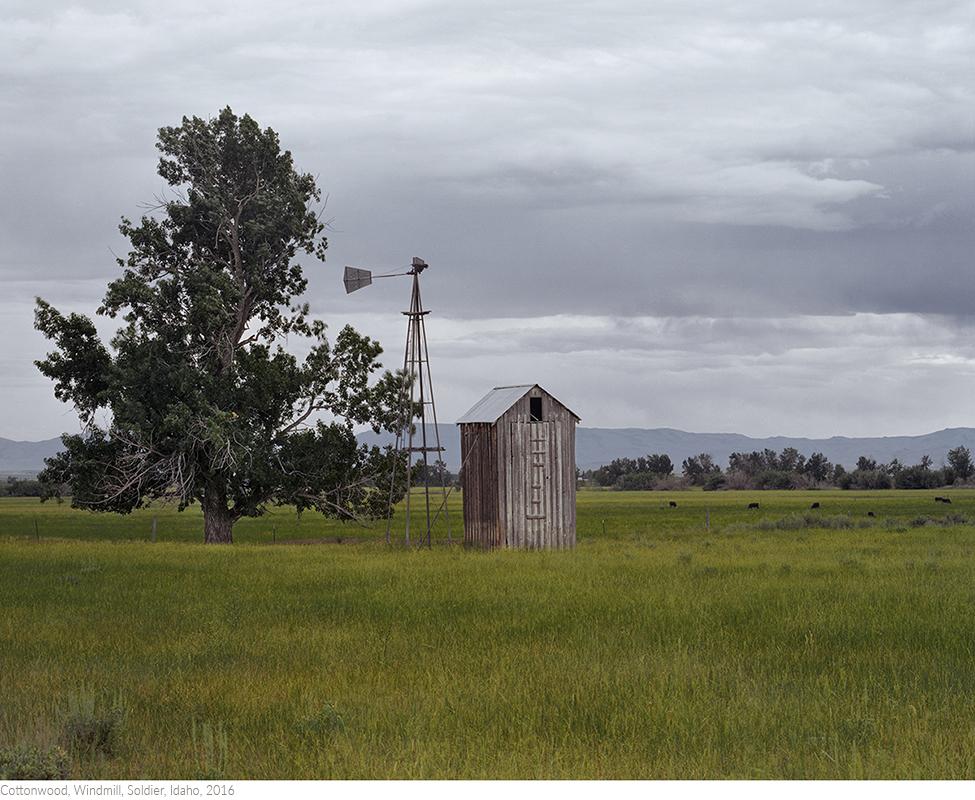Cottonwood,+Windmill,+Soldier,+Idaho,+2016_printtitledsamesize.jpg