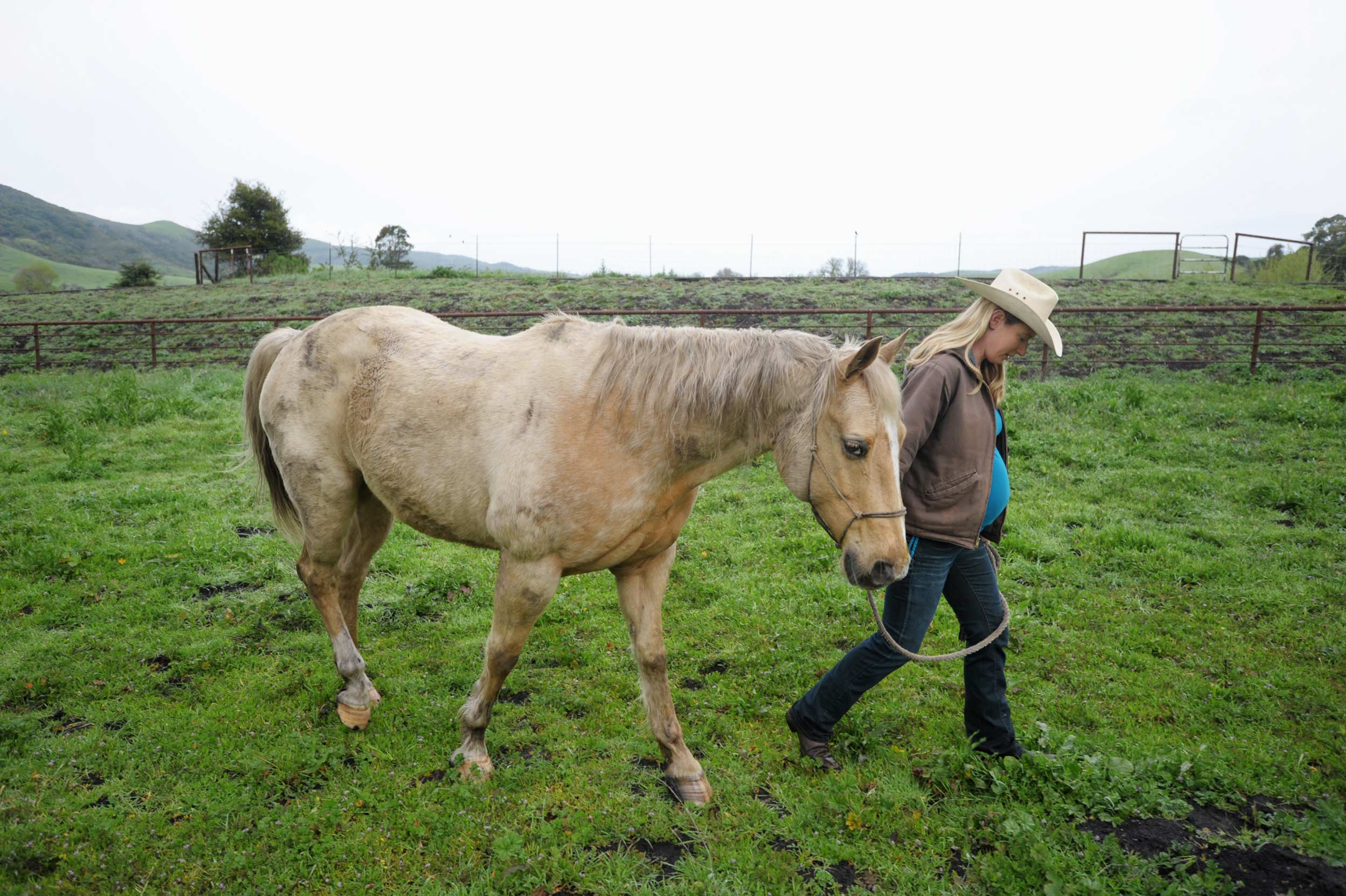showing-slideshow-rancher-paul-wellman.jpg