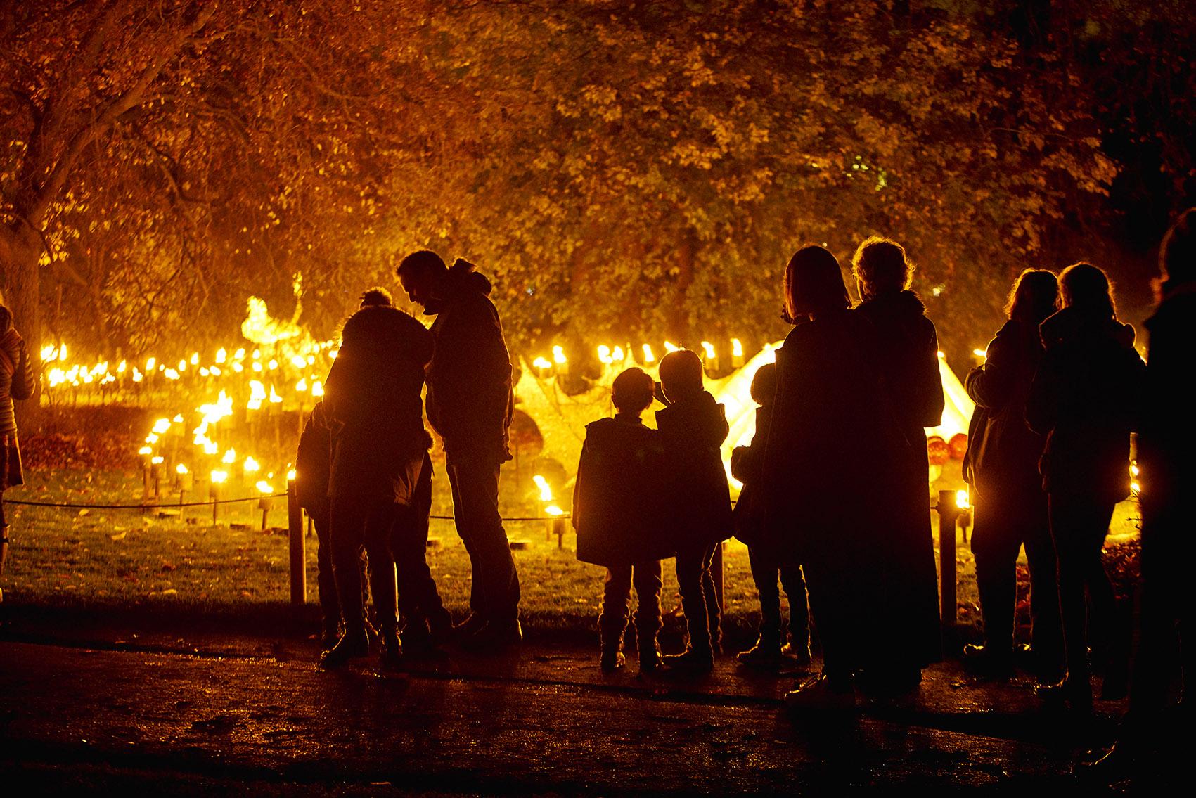 Fire Garden Illumination at Christmas at Belton.jpg