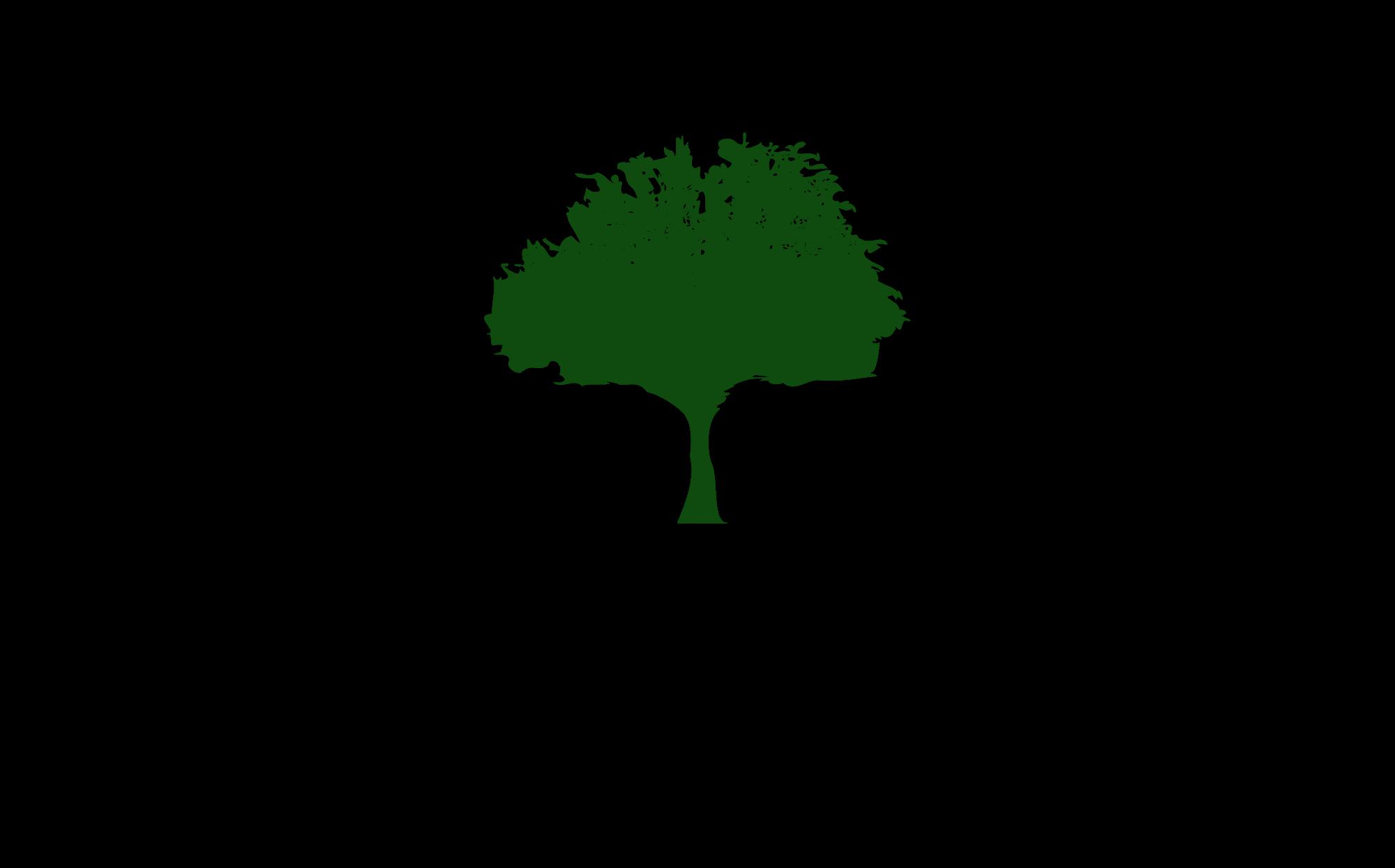 SimpleCraft-logo (1) - Copy.png