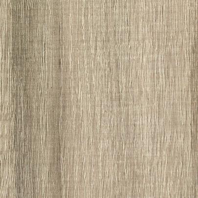Cambrian-Oak.png