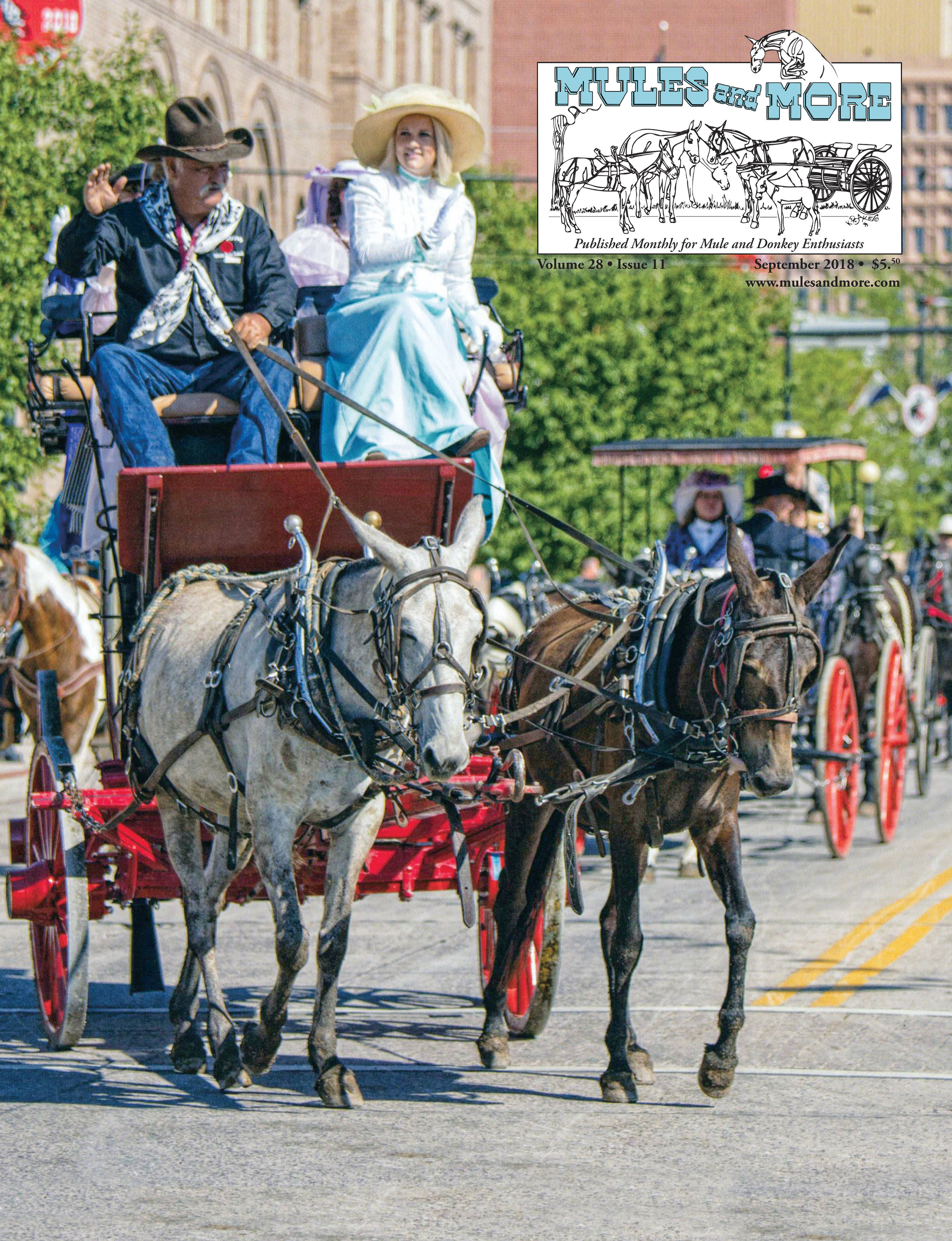 JERRY STROUP in the Grand Parade during Cheyenne Frontier Days in Cheyenne, Wyo., with his team, Roxie and Judy. JERRY and his wife YOLANDA have participated in the Grand Parade for 14 years and 56 parades.  Photos by Sissy Schneiderman